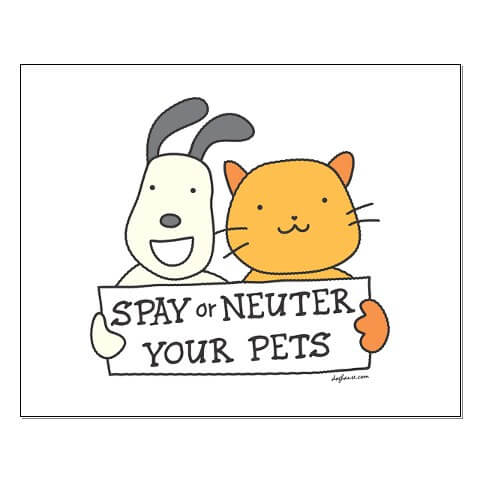 spay-or-neuter3