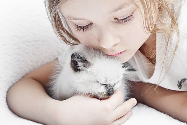 introducing-children-to-a-new-cat-or-kitten-page-image